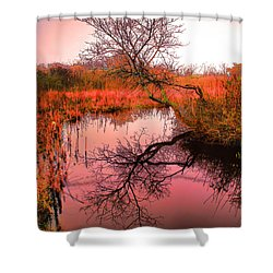 Dawn On The Marsh Shower Curtain by Nick Zelinsky
