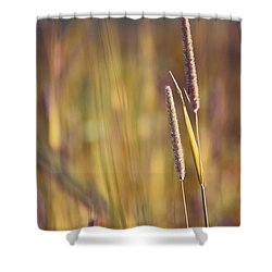 Day Whisperings Shower Curtain by Aimelle