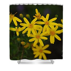Shower Curtain featuring the photograph Dbg 041012-0281 by Tam Ryan