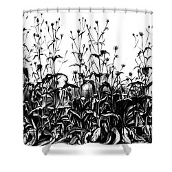 De Vries Experimental Garden Shower Curtain by Science Source