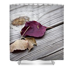 Dead Leaves Shower Curtain