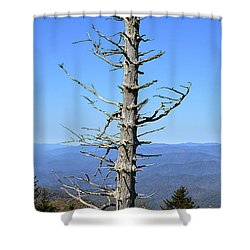 Dead Tree Shower Curtain by Susan Leggett