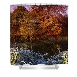 Deciduous Woods, In Autumn With Frost Shower Curtain by The Irish Image Collection
