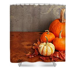 Decorative Fall Pumpkins Shower Curtain by Verena Matthew