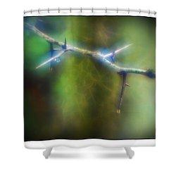 Deep In The Bayou Shower Curtain by Judi Bagwell