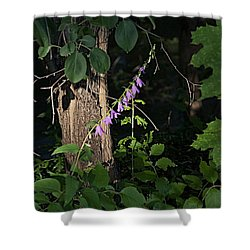 Shower Curtain featuring the photograph Deep by Joseph Yarbrough