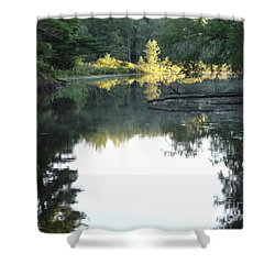 Deer River In Early Sun Shower Curtain