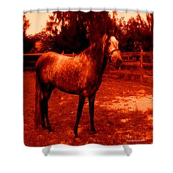 Shower Curtain featuring the photograph Defiance by George Pedro
