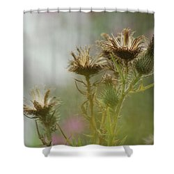 Shower Curtain featuring the photograph Delicate Balance by Tam Ryan