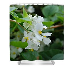 Shower Curtain featuring the photograph Delicate White Flower by Jennifer Ancker