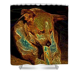 Delicious Bone Shower Curtain by One Rude Dawg Orcutt
