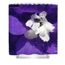 Shower Curtain featuring the photograph Delphinium Named Blue With White Bee by J McCombie