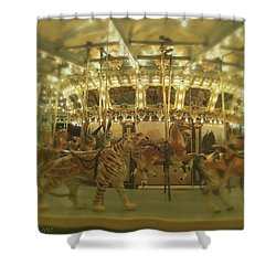 Dentzel Carousel At Glen Echo Park Maryland Shower Curtain
