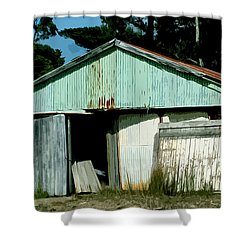 Derilict Building Shower Curtain by Phill Petrovic