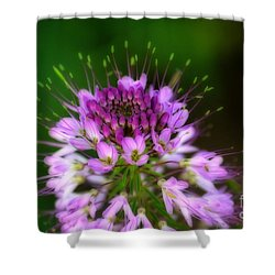 Desert Bloosom Shower Curtain