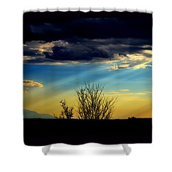 Shower Curtain featuring the photograph Desert Dusk by Susanne Still