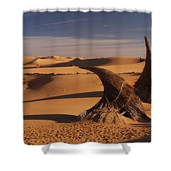 Desert Luxury Shower Curtain