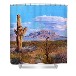 Desert Scene 4 Shower Curtain by M Diane Bonaparte