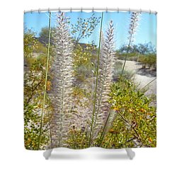 Desert Trail Shower Curtain by Kume Bryant