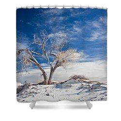 Desert Tree In White Sands Shower Curtain by Ralf Kaiser