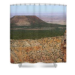 Desert Watch Tower View Shower Curtain by Julie Niemela
