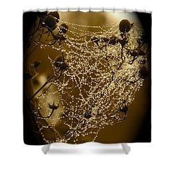 Dewdrop Cameo Shower Curtain by Carol Groenen