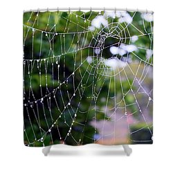 Dewdrops Dimension Shower Curtain by Carol Groenen