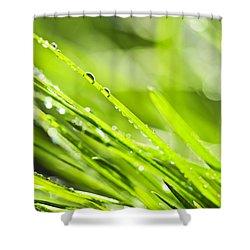 Dewy Green Grass  Shower Curtain by Elena Elisseeva