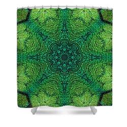 Dichro Green Shower Curtain by Kathy Sheeran