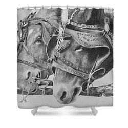 Dink And Donk Shower Curtain
