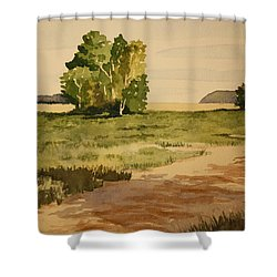Dirt Road 1 Shower Curtain by Jeff Lucas