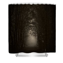 Disturbing Beauty Shower Curtain by Lourry Legarde