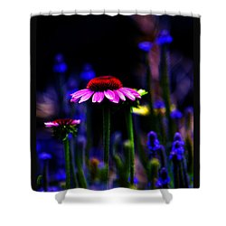 Divine Spirit Of Mother Earth Shower Curtain