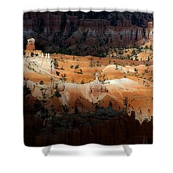 Shower Curtain featuring the photograph Do You Bielive In Magic by Vicki Pelham