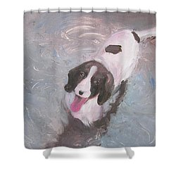 Dog In River Shower Curtain