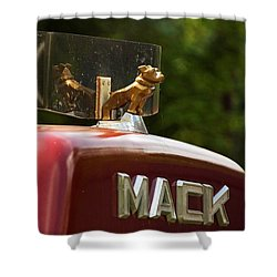 Dog On Truck  Shower Curtain