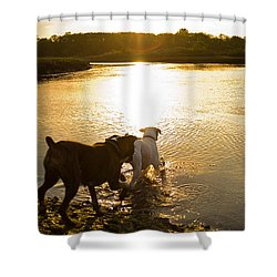 Dogs At Sunset Shower Curtain by Stephanie McDowell