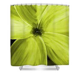 Dogwood Bloom Yellow Shower Curtain by Mark Moore