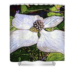 Dogwood Days Shower Curtain by Judi Bagwell