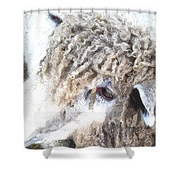 Dolly Dwc Shower Curtain