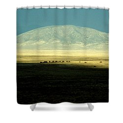 Dome Mountain Shower Curtain by Brent L Ander