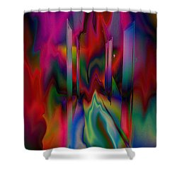 Doors In My Dream Shower Curtain