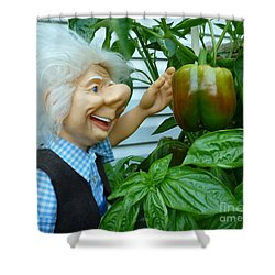 Shower Curtain featuring the photograph Dorf Grandpa Doll Picking Bell Peppers by Renee Trenholm