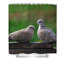 Doves Shower Curtain