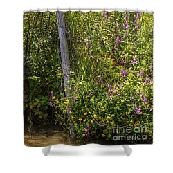 Shower Curtain featuring the photograph Down To The Water. by Clare Bambers