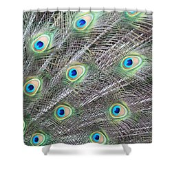 Dragon Eyes Shower Curtain by Amy Gallagher