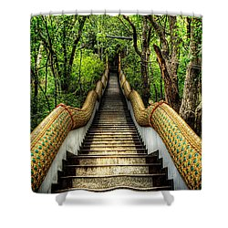 Dragon Steps Shower Curtain by Adrian Evans