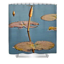 Shower Curtain featuring the photograph Dragonfly And Lotus by Luciano Mortula