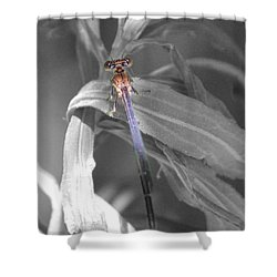 Dragonfly Bw With Color Shower Curtain