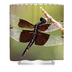 Shower Curtain featuring the photograph Dragonfly Closeup by Kathy  White